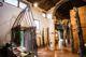 Museo Etnografico del Bosco e della Mezzadria